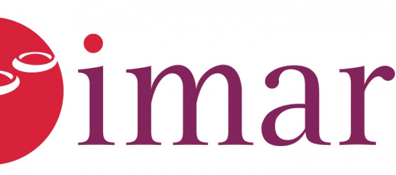 Imara Reports Second Quarter 2020 Financial Results and Business Highlights